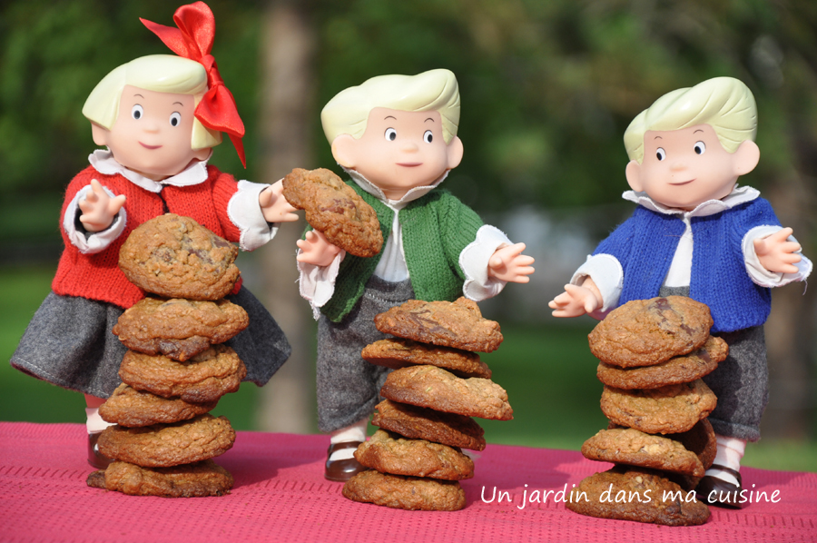 Cookies_un_jardin_dans_ma_cuisine_wordpress