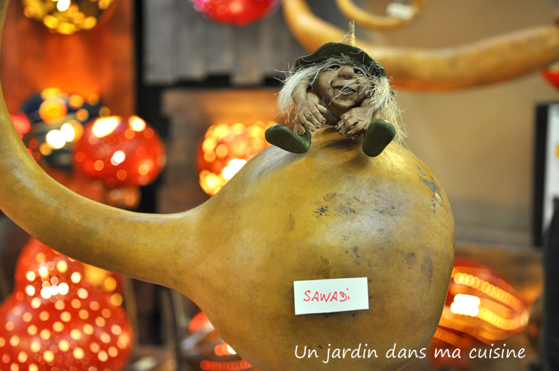 Salon_marjolaine_un_jardin_dans_ma_cuisine_62.jpgg