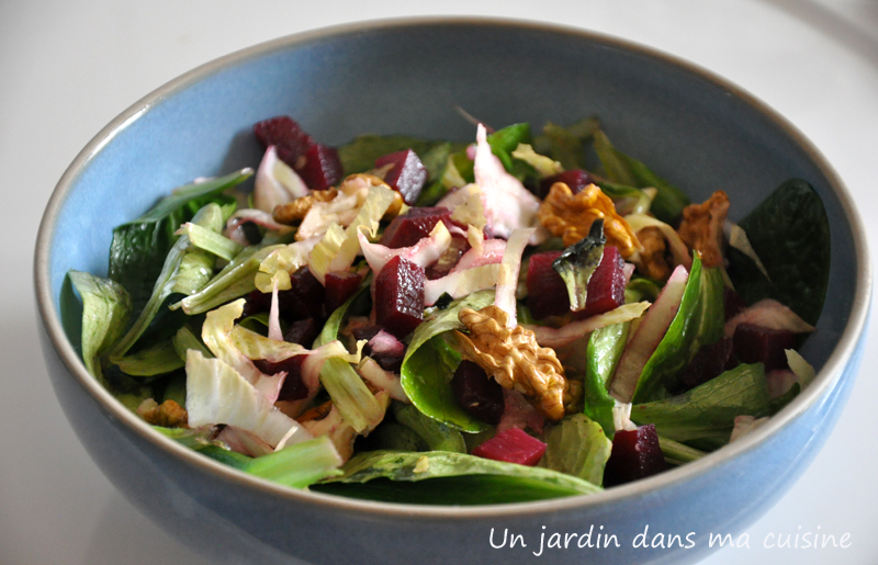 salade d'hiver un jardin dans ma cuisine