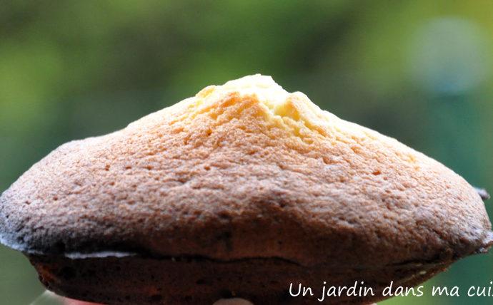 Madeleines au confit de citron