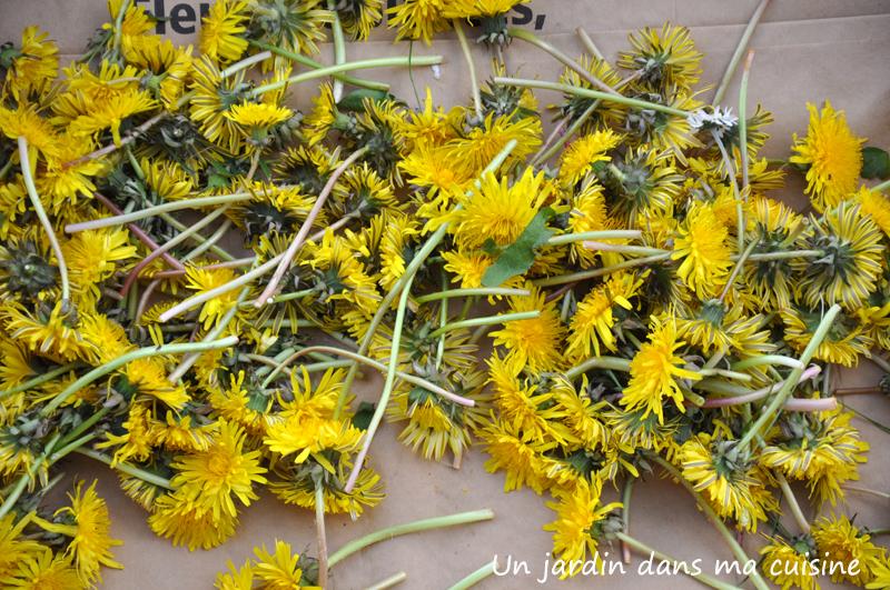 cramaillotte ou miel de pissenlit un jardin dans ma cuisine