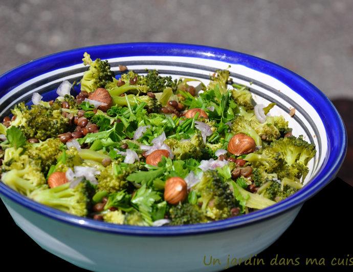 salade de lentilles au brocoli
