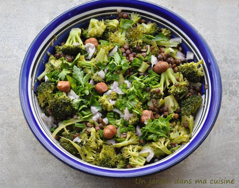salade-de-lentilles-au-brocoli-un-jardin-dans-ma-cuisine-wordpress