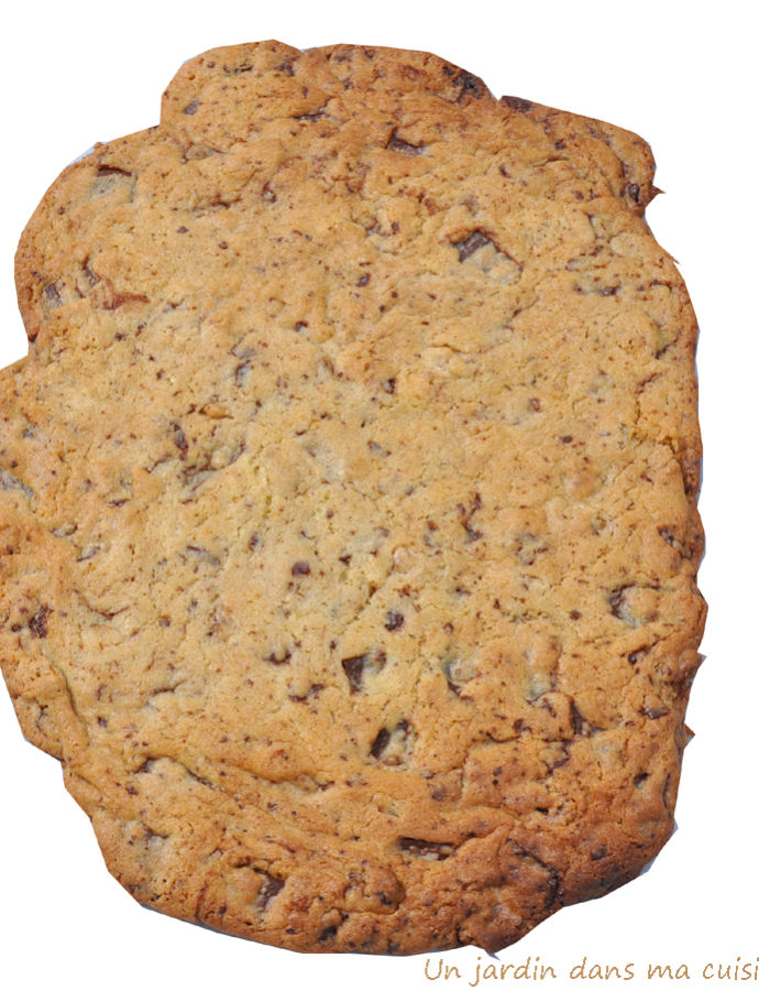 cookie géant