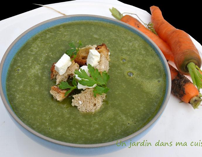 soupe de fanes de carottes