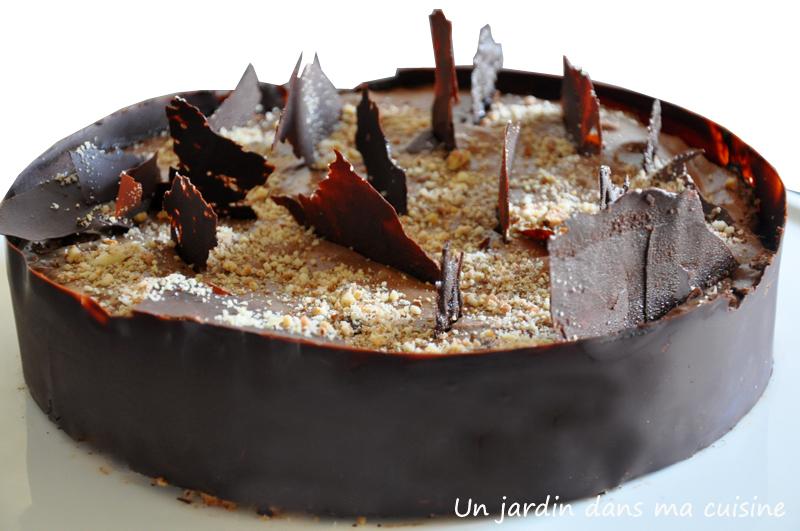 entremet au chocolat un jardin dans ma cuisine