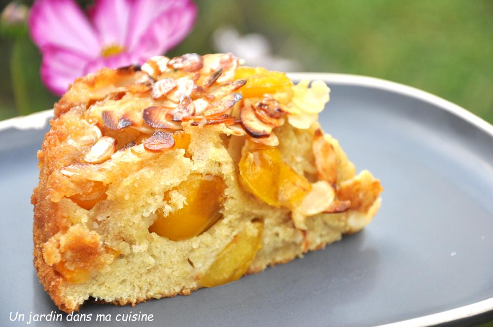 Cake Fruits Secs Et Abricots