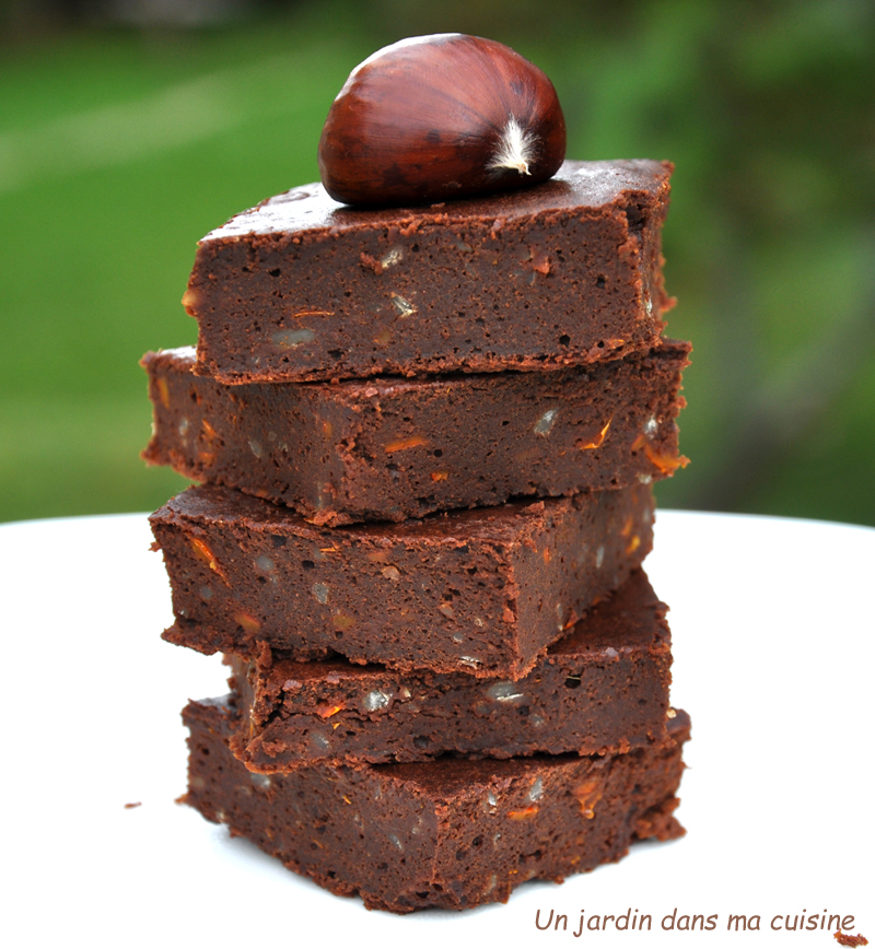Cake Gingembre Confit Chocolat