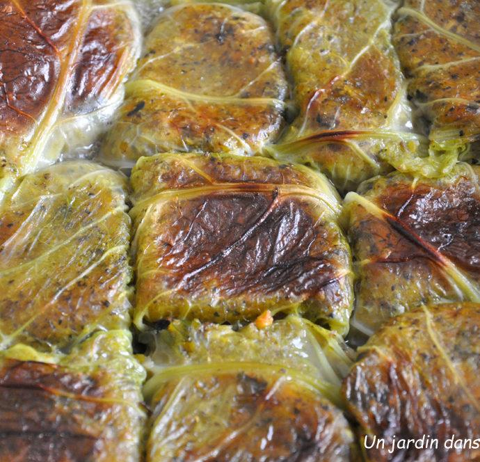 feuilles de chou farcies aux légumes