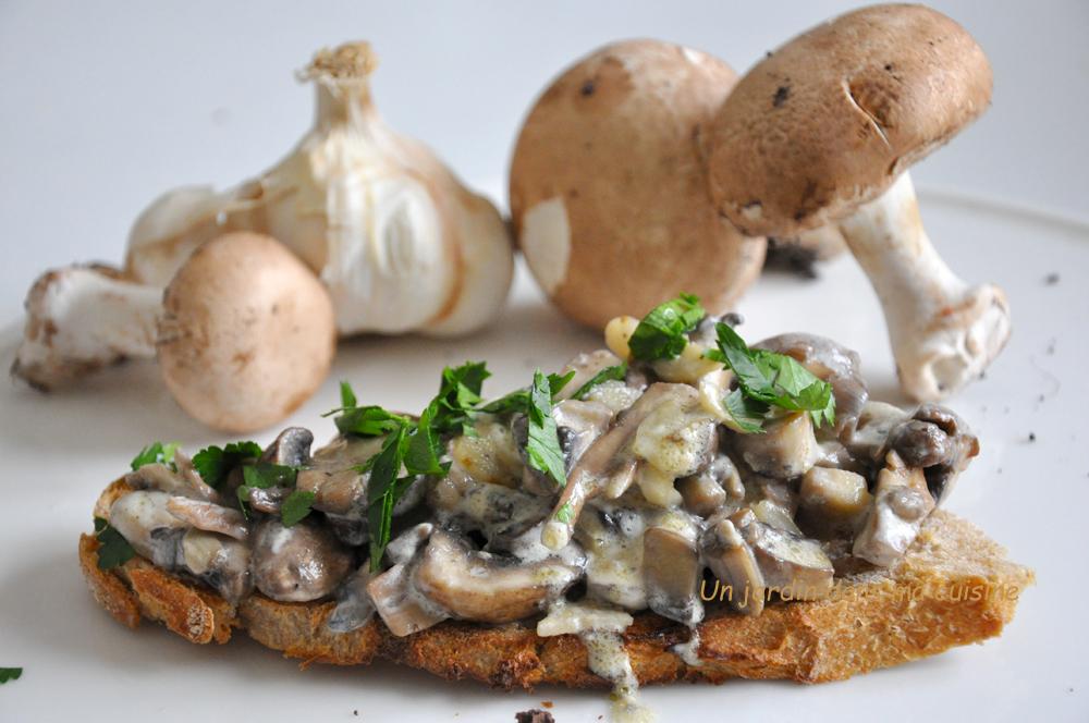 Tartine champignons frais de Paris