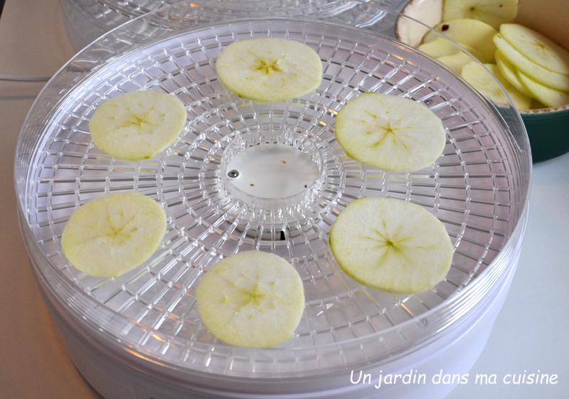 Fruits d shydrat s un jardin dans ma cuisine for Asticots dans ma cuisine
