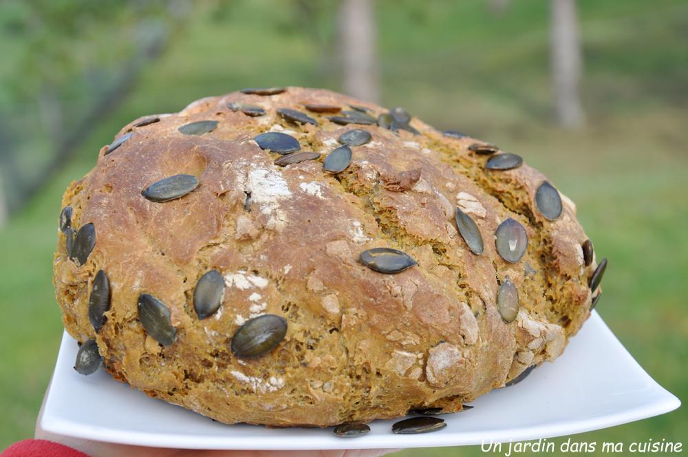 pain cocotte courge olive et ses petites graines