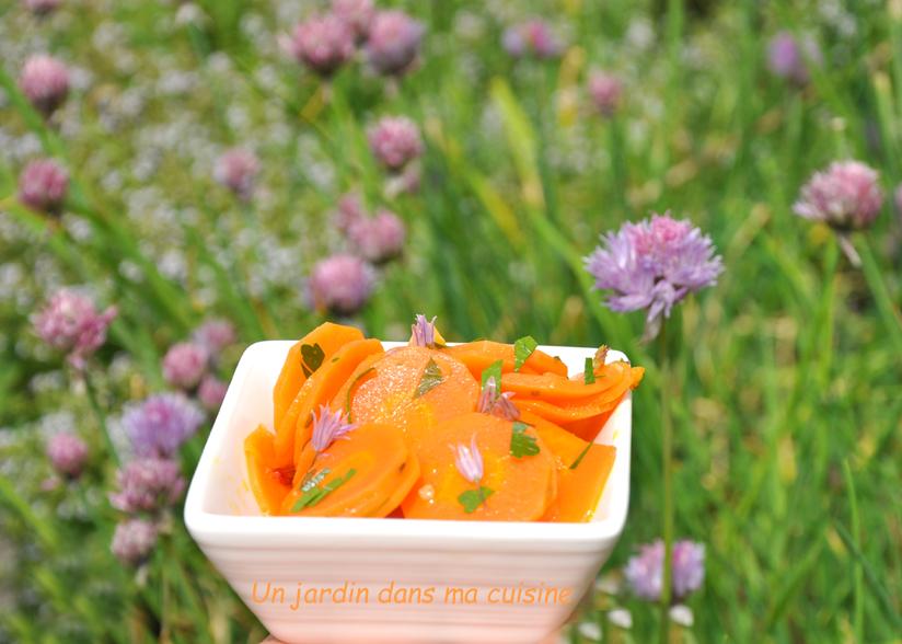 carottes froides marinées