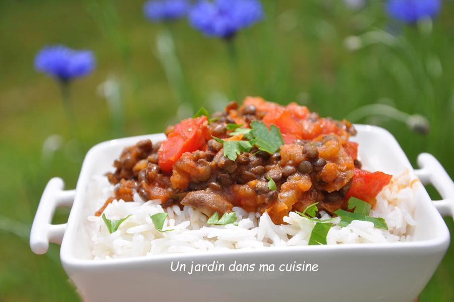 sauce végétale lentilles légumes
