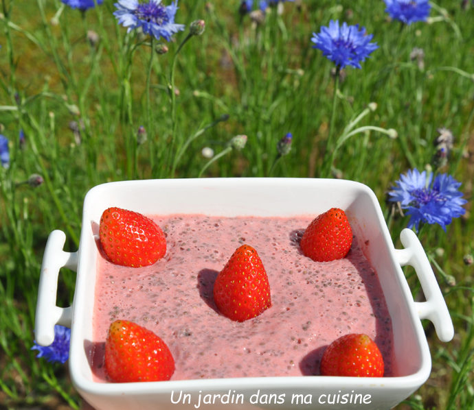 pudding de chia fruits rouges