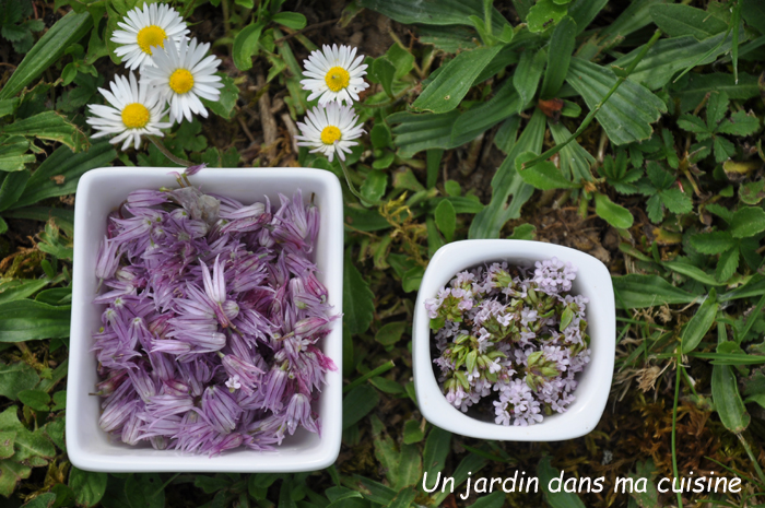 gaufres fleurs de ciboulette et fleurs de thym