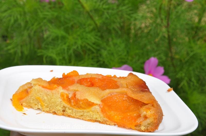 gâteau renversé aux abricots